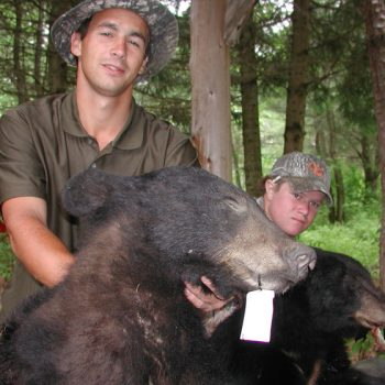 Chasse à l'ours noir - Black bear hunting