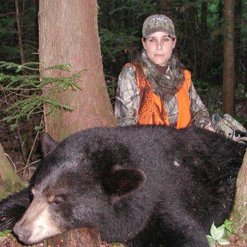 Chasse à l'ours noir - Black bear hunting